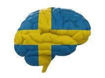 Ludzki mózg jest barwiącym flaga Szwecja Fotografia Royalty Free