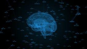 Ludzki mózg Plexus z liczbami Piękny tło Pojęcie nauka, medycyna i biznes, pętla ilustracji