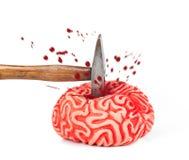 Ludzki mózg guma z młoteczkowym ciosem i krwionośnym upadkiem Zdjęcie Stock