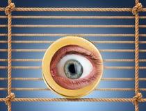 Ludzki oko w monecie Zdjęcie Royalty Free
