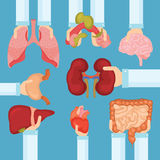 Ludzki organ dla przeszczepienia pojęcia z rękami, medyczny sztandar Zdjęcie Royalty Free