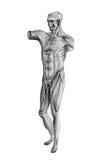 Ludzki postać rysunek od 45 kąta obraz royalty free