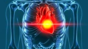 Ludzki serce bólu 3d rendering Obraz Royalty Free