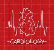 ludzki serce i bicie serca wektor Obrazy Royalty Free