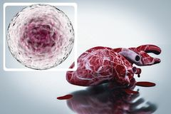 Ludzki serce i DNA pojęcie kierowej choroby traktowania ilustracji