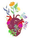 LUDZKI serce I roślina ilustracja wektor