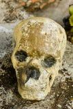 Ludzki skulll w świątyni Zdjęcia Stock