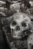 Ludzki skulll w świątyni Obrazy Royalty Free