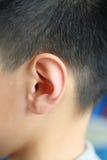 Ludzki ucho Fotografia Stock