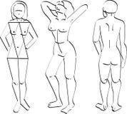 ludzkie ciało ilustracji