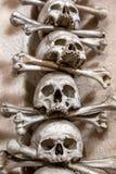 ludzkie czaszki Obrazy Stock