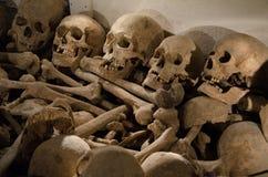 ludzkie czaszki Zdjęcia Royalty Free