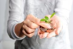 Ludzkie ręki mienia monety i narastająca roślina Zdjęcie Royalty Free