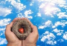 Ludzkie ręki utrzymują naturalnego gniazdeczko inside z czerwonym sercem dosięgać gniazdowe Rodzinne więzi i dziecka próbami ten, Zdjęcie Stock
