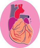 ludzkie serca royalty ilustracja