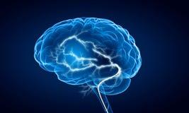 Ludzkiego mózg bodziec Mieszani środki Fotografia Stock