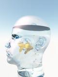 Ludzkiej głowy złota ryba ilustracja wektor
