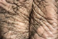 Ludzkiej stopy skóra Obrazy Stock