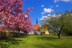 Luebben castle in spring Royalty Free Stock Images