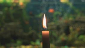 Lueur d'une bougie brûlante sur le fond de l'aquarium clips vidéos