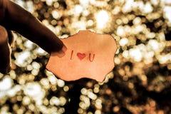 Lueur de l'amour Photos libres de droits