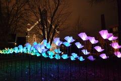 Lueur de lumière de Georgetown Photographie stock