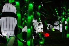 Lueur Dubaï, EAU de jardin Images libres de droits