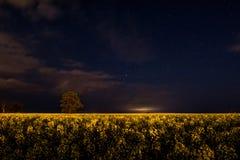 Lueur la nuit Photographie stock