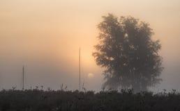 Lueur renversante de lever de soleil au-dessus de rivière brumeuse dans le paysage de campagne Photo stock