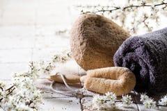 Lufa y toalla sobre las flores frescas para el tratamiento del balneario de la exfoliación Fotos de archivo