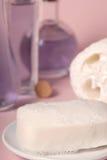 luffa肥皂 库存图片