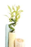 Luffa, Bambus und Tücher Lizenzfreie Stockbilder