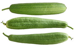 Luffa Fruits Stock Photo
