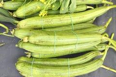 Luffa gourd Stock Photo
