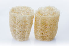 Luffa, loofa natural vegetable fiber for body scrubbing Royalty Free Stock Images