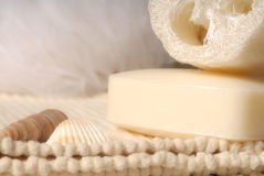 Luffa and soap royalty free stock image