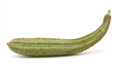 Luffa Squash Royalty Free Stock Photos