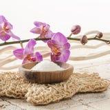 Luffahandschuh mit Orchideenblumen für Badekur Stockfotografie