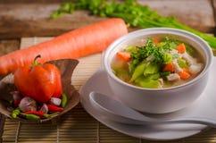 Luffasvamp- och morotsoppa, thailändsk mat Royaltyfri Bild