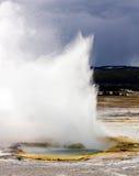 luft får utbrott den geotermiska geyseren violently Royaltyfri Foto