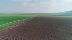 Luft- Gesamtlänge eines grünen Weizenfeldes in Nord-Israel stock footage