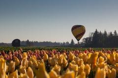 luft sväller den varma over tulpan för fältet Royaltyfri Bild