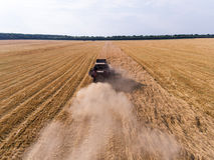 Lufta skottet av skördearbetaren på vetefältet Arkivbilder