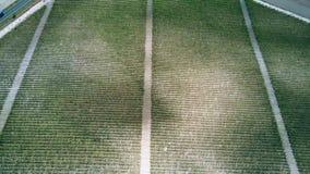 Luftabstiegansicht eines großen Weinbergs stock footage