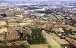 Luftaufnahme der bebauten Felder Stockfoto