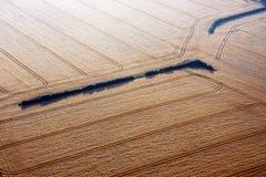 Luftaufnahme der Weizenfelder Stockbild