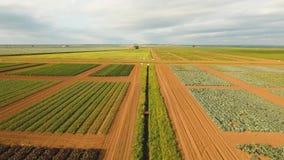 Luftaufnahme des Ackerlands stock footage