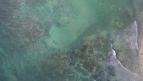 Luftaufnahme des Strandes stock video