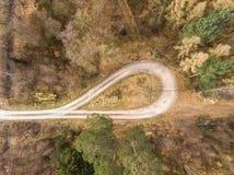 Luftaufnahme gemacht vertikal von einer Drehenschleife in einer Waldkante mit großer Fichte, Kiefer und Tannenbäumen, abstrakte A stockfotos