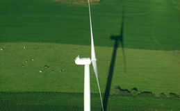 Luftaufnahme von windturbine und von grüner Wiese Lizenzfreies Stockfoto